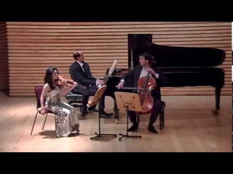 Brahms: Piano Trio no.2 C major op.87, 1st movement