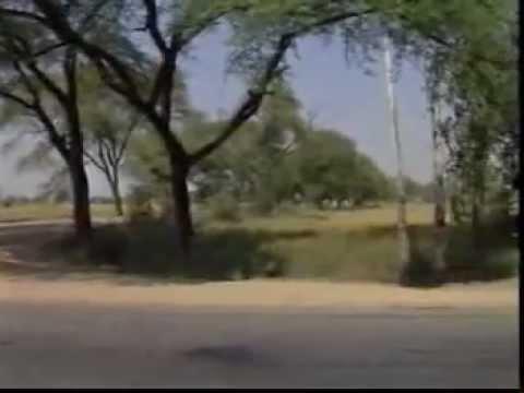 Hindi Bhajan - Avagun Mose Bisarat Naahi [English Lyrics]