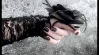 Trapt: Black Rose