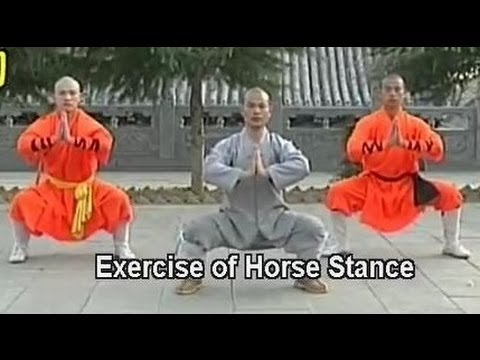 Shaolin kung fu basic movements