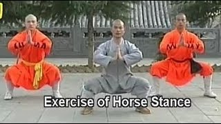 Shaolin Kung Fu basic moves