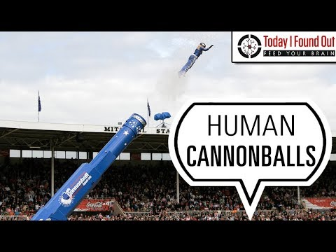 Why Don't Human Cannonballs Die When Shot Out of the Cannon?