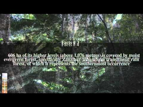 Chirinda Forest Botanical Reserve Top # 7 Facts