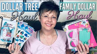 Dollar Tree & Family Dollar | Double Haul! | New Finds | May 2019 | GIVEAWAY WINNERS ANNOUNCED!