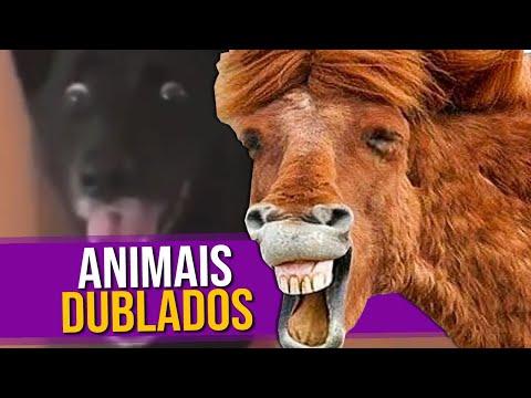 Animais Dublados Episódio 3