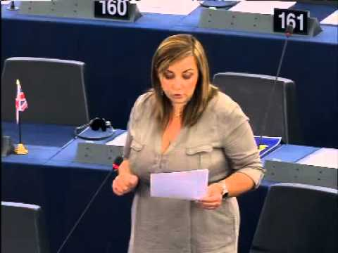 My speech during the plenary 9/07