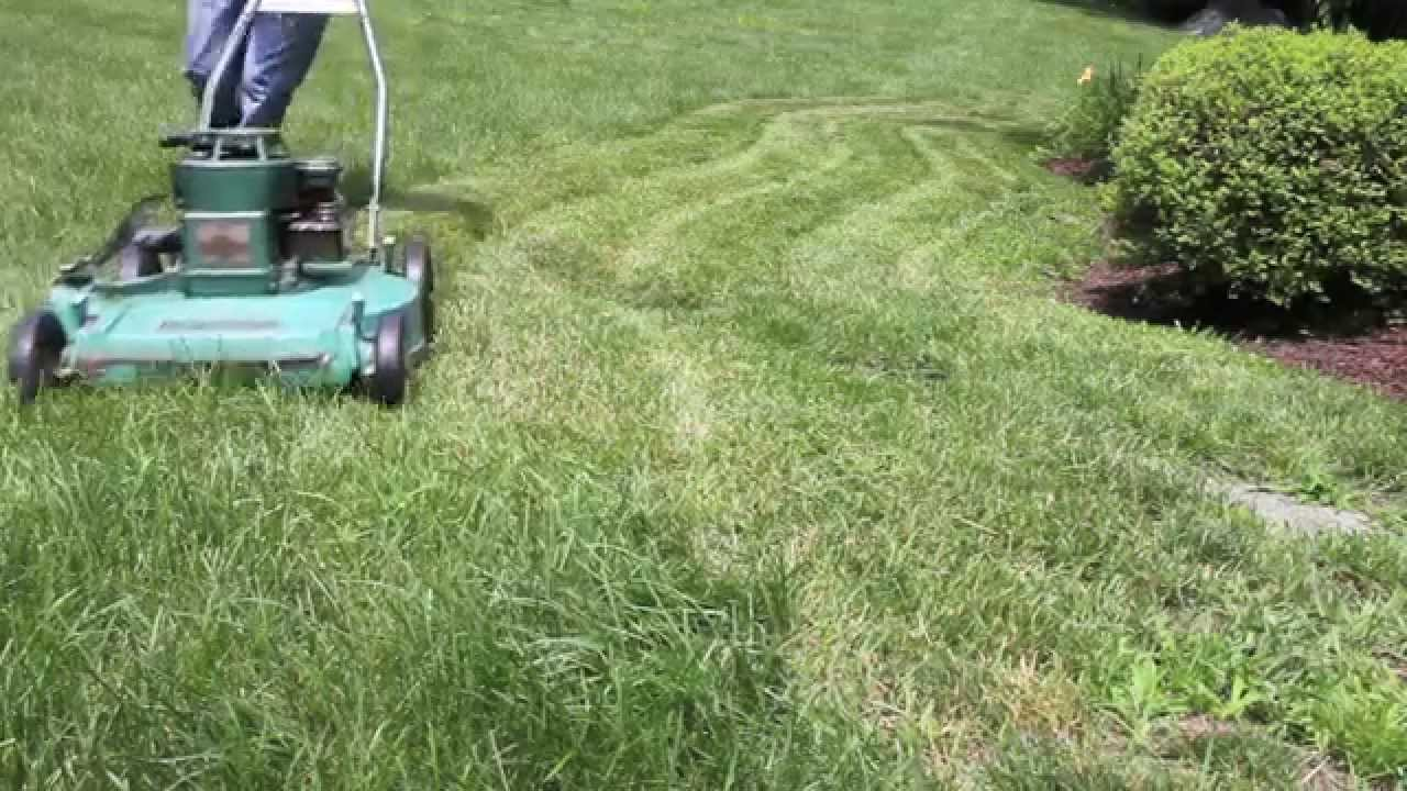 Best Cordless Lawn Mower Reviews: Complete Guide
