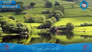 Surah Fussilat [41: 30-38] - Alhasan Baraeia