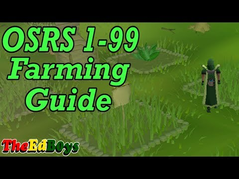 OSRS 1-99 Farming Guide | Updated Old School Runescape Farming Guide