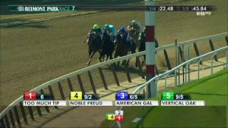 American Gal - 2017 Victory Ride Stakes