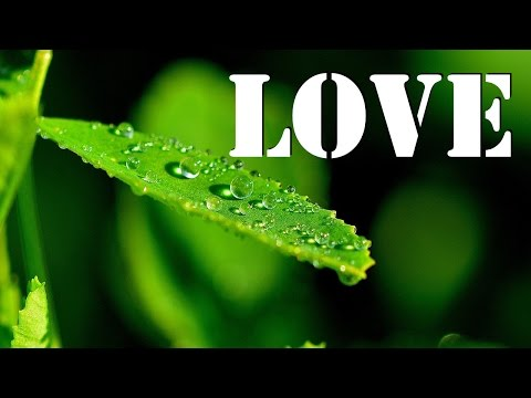 God Loves All His Creations | Father Of Mercy