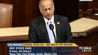 Congressman Steve King -- We will never recover from ObamaCare