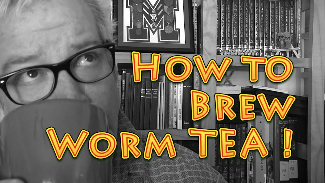 How To Brew Worm Tea