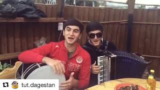Кавказцы красиво поют