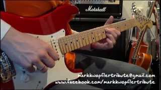 Mark Knopfler Tribute - Beryl