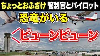 【おもしろ航空無線】鳥の注意喚起でおふざけをする管制官とパイロット