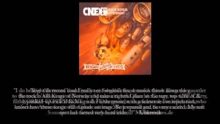 Chuck Norris Experiment - Right Between The Eyes [Album Sampler 2014]
