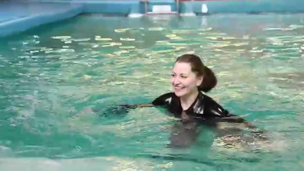 Аквариумный интернет-магазин по продаже аквариумов, аксессуаров и оборудования для аквариумов, купить аквариум jebo, juwel, jinlong, cayman,