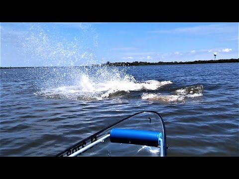 Large Group of Manatees Charge Towards Transparent Canoe/Kayak