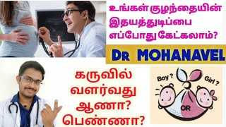 Boy or Girl in Pregnancy with Baby Heart Beat Tamil  Dr MOHANAVEL