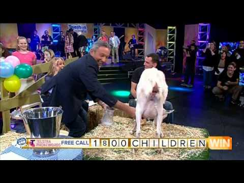 NSW Gold Telethon   Ken Sutcliffe Milks Goat  - (09.06.2014)