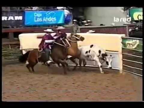 Criadero Santa Isabel, Campeones de Chile 2014..!!!