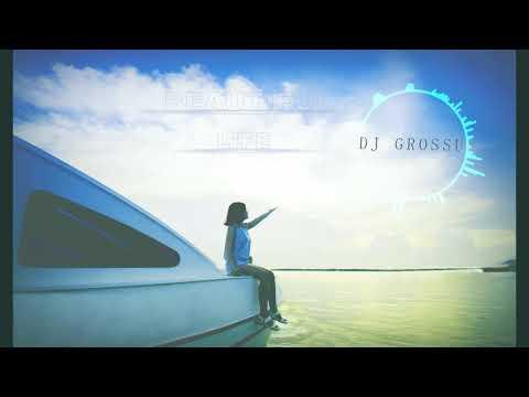 DJ GROSSU _ Beautiful Life ( Official Song ) Instrumental | 2019