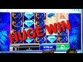 CASINO Bet365 Big Win  Panther Pays Huge Win
