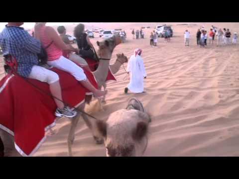 Travel Thought: Camel Ride On The Desert Safari In Dubai