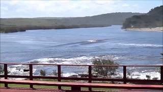 wavecrest flooding 2014