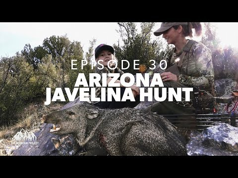 Kevin Misses, Brittany Doesn't ;-)  - Ep.30 - Arizona Archery Javelina Hunt