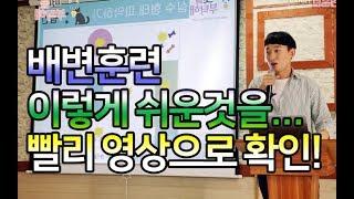 [강아지 훈련] 배변훈련 part.2 / 배변교육 / 강아지 교육 l 펫을부탁해