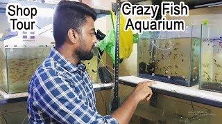 Crazy Fish Aquarium Visit