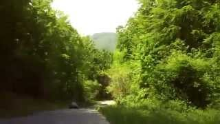Driving Through the Forest - Laz Bistrički - Croatia