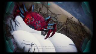 Spiderman gadget has been stolen by pigeon (Harry Research Station)