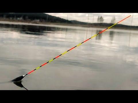 ПОПЛАВОК ТОПИТ, ВЫКЛАДЫВАЕТ как карась. Рыбалка на поплавок весной.