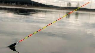 КЛЮЁТ СРАЗУ ПО ДВЕ РЫБЫ Рыбалка на поплавок весной