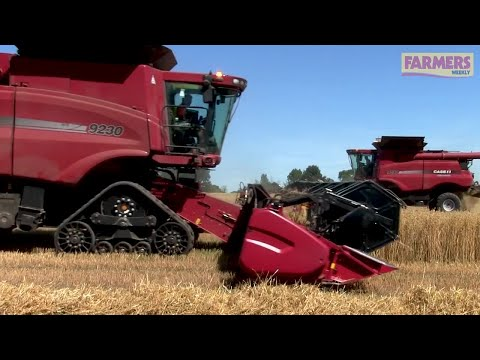 Yields down and quality a worry for spring crops