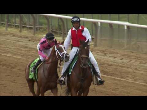 Catch A Glimpse Returns in Woodbine's Nassau Stakes