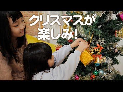 大きなクリスマスツリーを飾ったら娘達も愛猫も大喜び!
