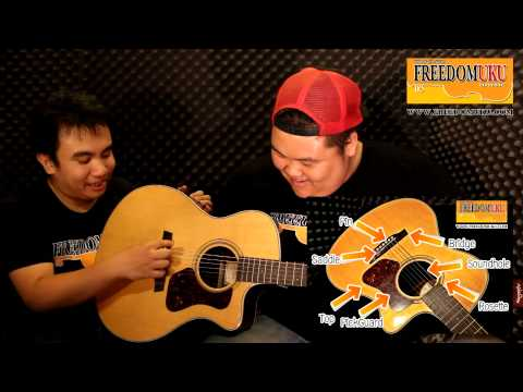Guitar Lesson  ส่วนประกอบของกีตาร์ [EP.1 by Freedom Uku Music]