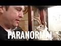 Paranormal Day - International Cryptozoology Museum - Bigfoot, Ogopogo, Jackalope, Chupacabra