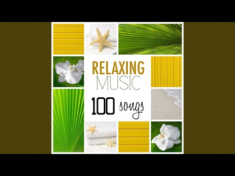 Mindful Meditation Songs