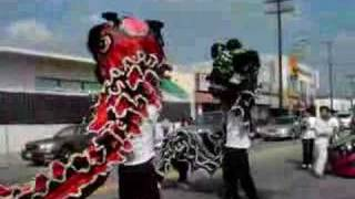 LK Chinese liondancing