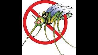 что если комары исчезнут?