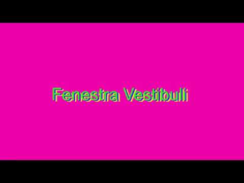 How to Pronounce Fenestra Vestibuli