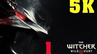 THE WITCHER 3: WILD HUNT 4K 5K PC GAMEPLAY | No. 1 | GTX TITAN X | 5960X | ThirtyIR.com