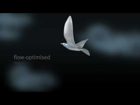 Video thumbnail of SmartBird