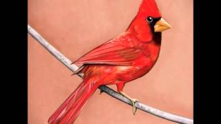 Old Crows (HQ) (HD) (with lyrics) - Alexisonfire