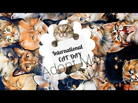 International Cat Day: Know its origin
